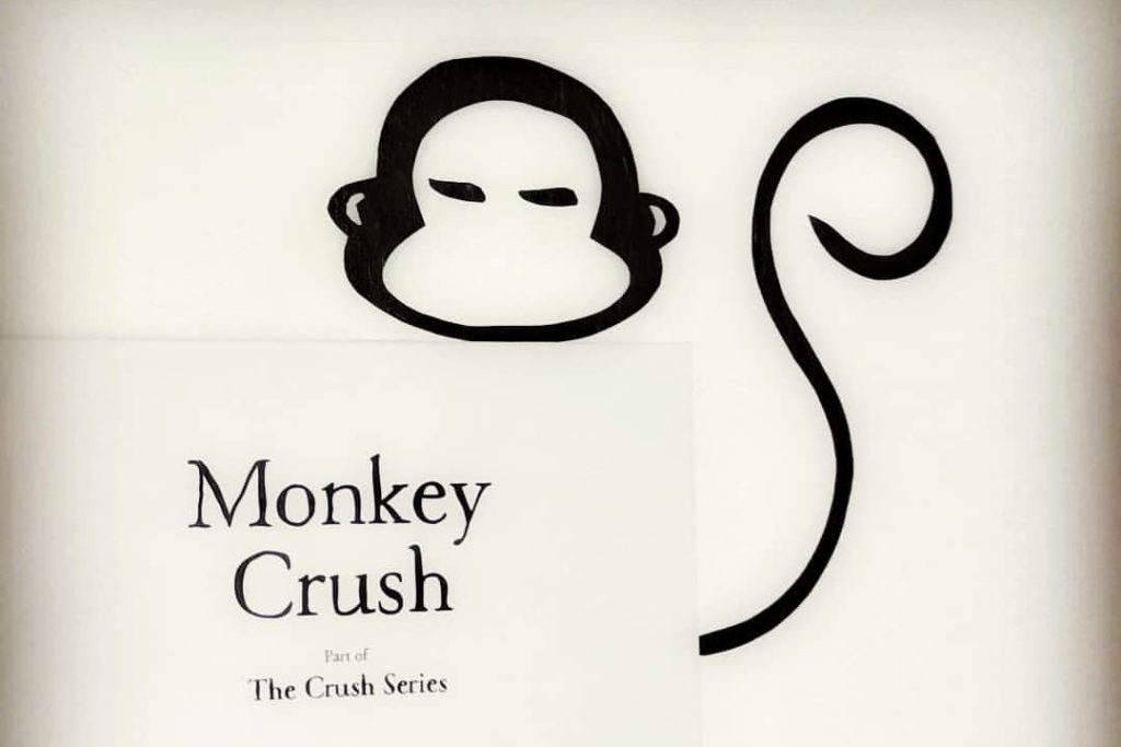 Catinca Vlad - Monkey Crush
