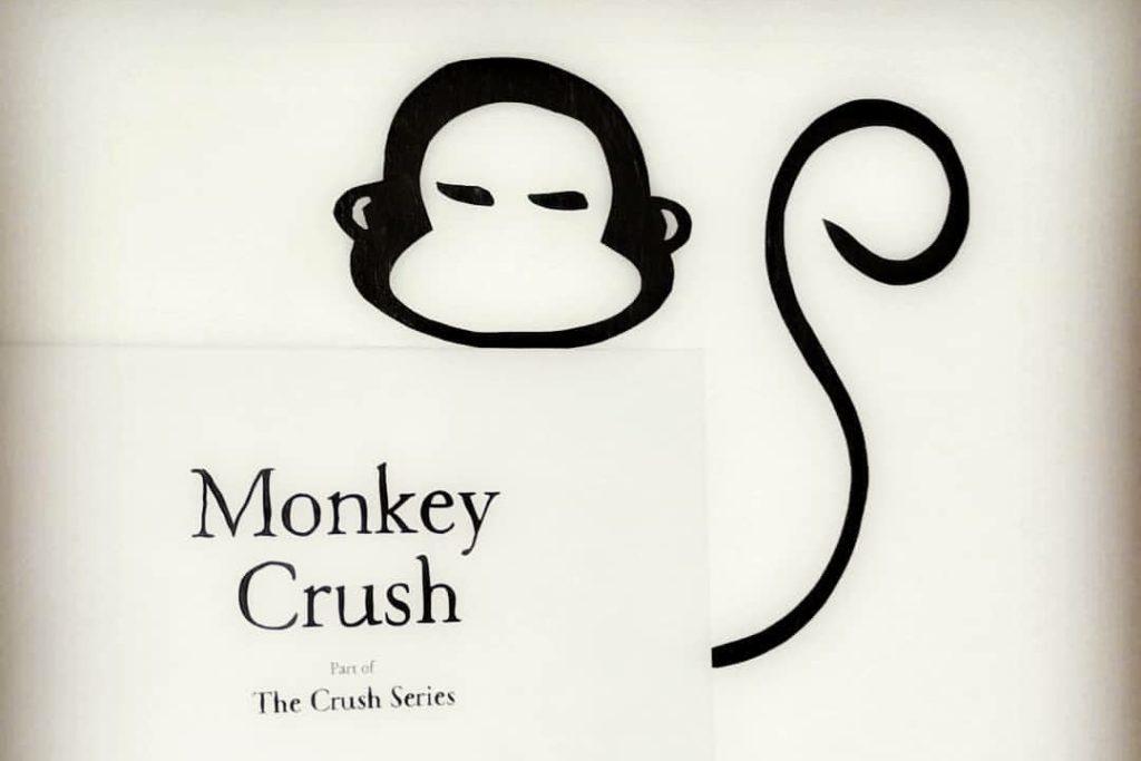 Catinca Vlad - Monkey Crush
